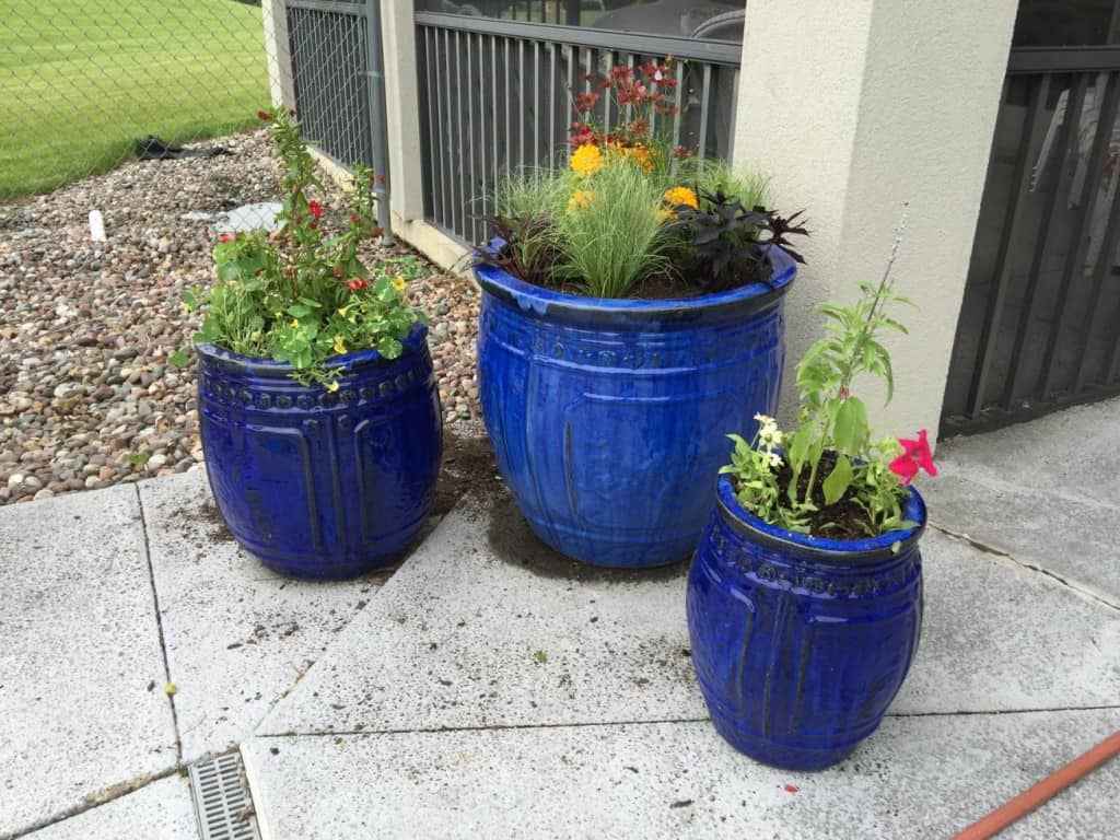 blue flower pots