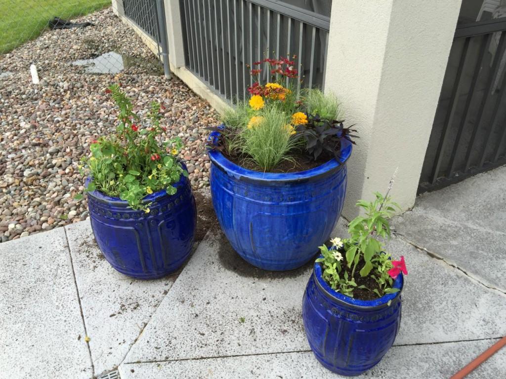 blue flower pots 2